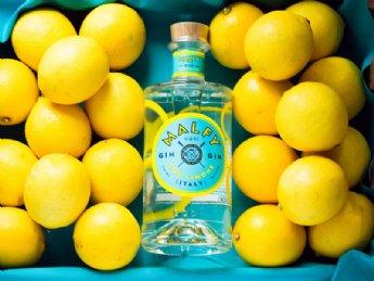 salg af Malfy Gin